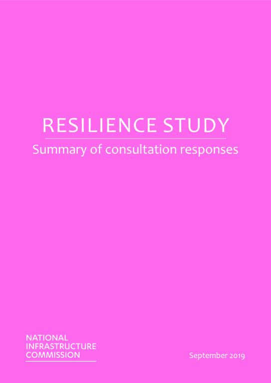 thumbnail of NIC_Resilience_Scoping_Paper_Consultation_Summary